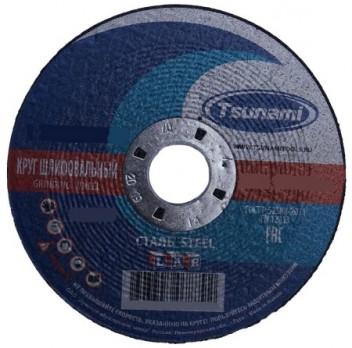 Круг шлифовальный 125х6х22 A 24 R BF L TSUNAMI